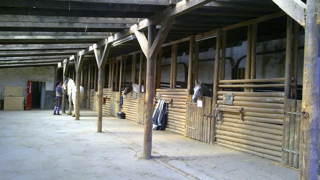 unterer Holzstall