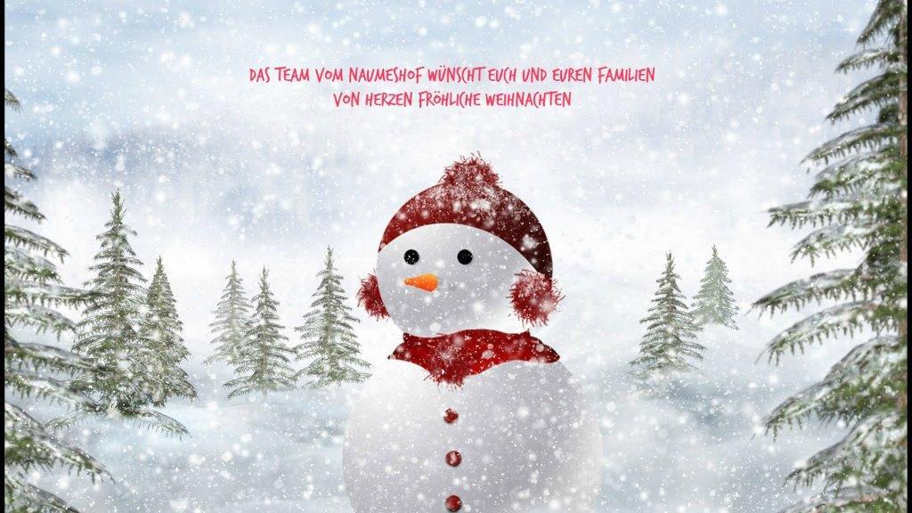 Fröhliche Weihnachten 5
