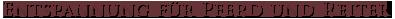 naumeshof headline -